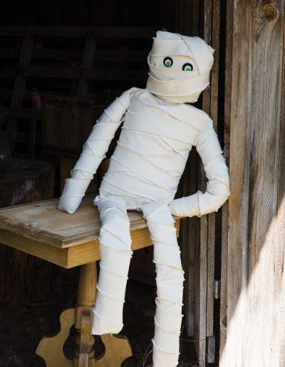 1006629 Mummy