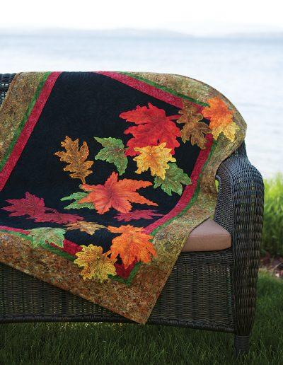 3527-(COV)AutumnSplendor